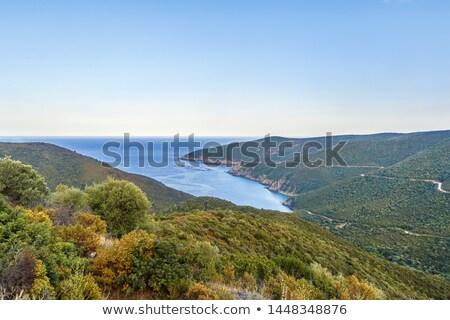 Ver Grécia ponta península praia Foto stock © borisb17