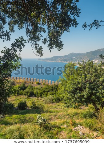 High view of Alanya bay stock photo © photoblueice