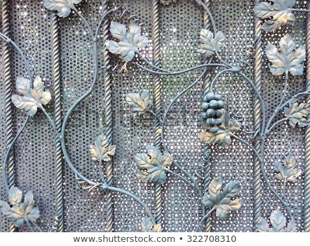 vigne · fer · porte · vue · gris · design - photo stock © bobkeenan