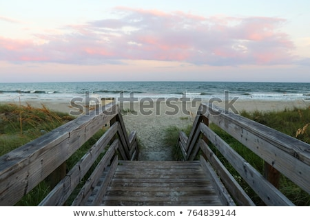 wooden stairs over dunes at beach stock photo © elenaphoto