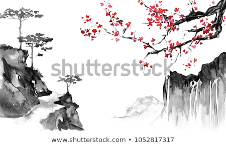Sakura chinese painting Stock photo © sahua