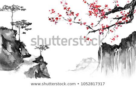 sakura · fa · cseresznyevirág · virágok · faág · kék · ég - stock fotó © sahua