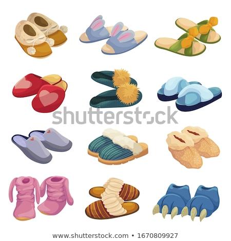 Házi cipők háttér nyár láb cipő trópusi Stock fotó © leeser