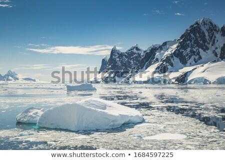 Mont Blanc massif - Mer de glace glacier Stock photo © Antonio-S