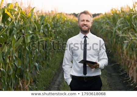 Stock fotó: Elégedett · mosolyog · üzletember · áll · zöld · kint
