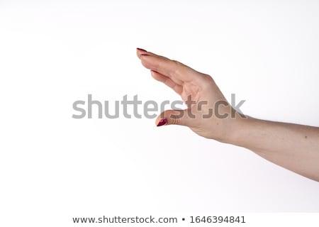 рукой знак иллюстрация изолированный белый знак цвета Сток-фото © laschi
