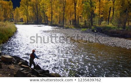 Mulher outono mulher atraente vestido vermelho em pé Foto stock © peterveiler