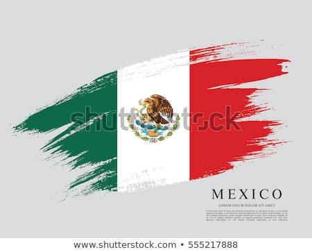 banderą · Meksyk · wiatr · wysoko · szczegółowy - zdjęcia stock © hypnocreative