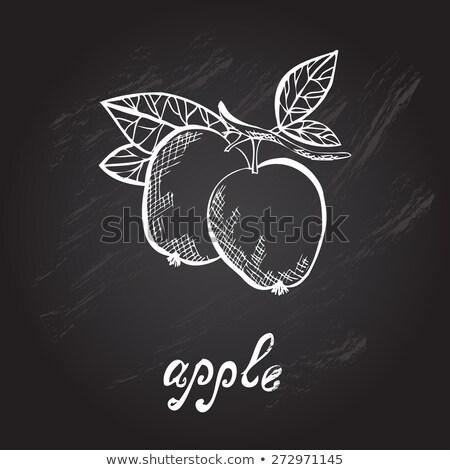 Gebruikt decoratief appel natuur krachtig kan Stockfoto © OleksandrO