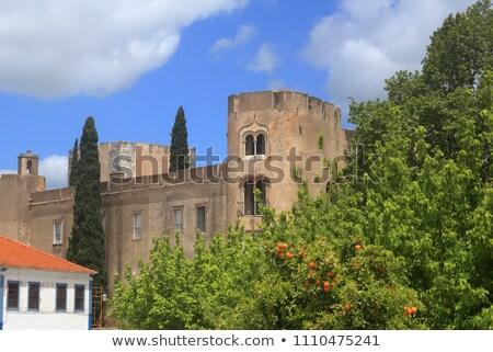 Castle of Alvito, Alentejo, Portugal  Stock photo © inaquim