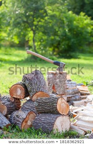 Posiekane drewno opałowe czeka następny zimą Zdjęcia stock © franky242