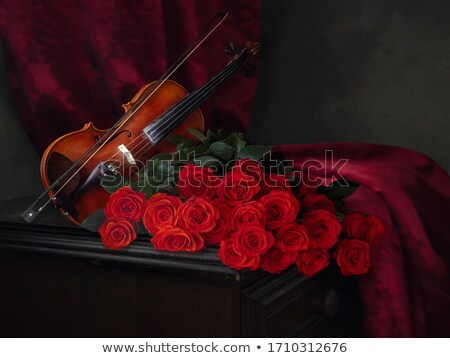 Stock photo: Beautiful roses and violin!