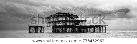 pier · Angleterre · vers · le · bas · ouest · sussex · caillou - photo stock © tlorna