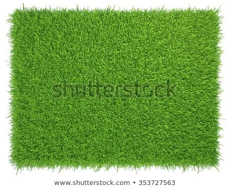 Herbe artificielle résumé gazon sport vert Photo stock © speedfighter