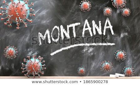 Montana · 3D · ayarlamak · simgeler · harita - stok fotoğraf © cteconsulting