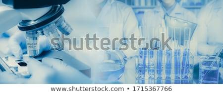 laboratory samples stock photo © photography33