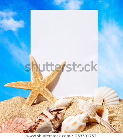 sea shells with sand and white paper as background  Stock photo © artush