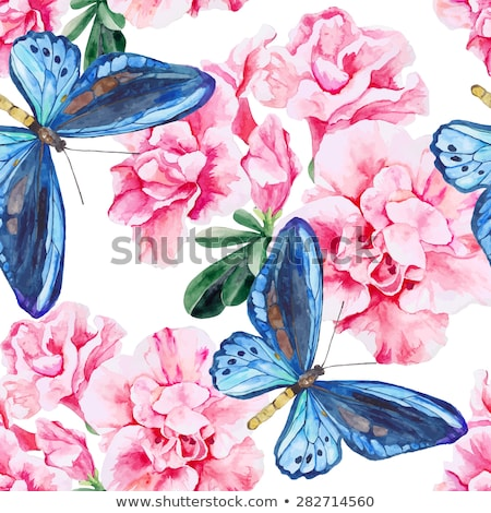 romantic colorful floral background with butterfly stock photo © elmiko