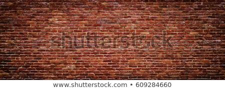 eski · boyalı · tuğla · duvar · doku · boya - stok fotoğraf © premiere