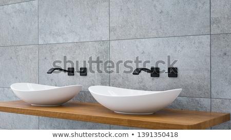 Modern basin Stock photo © Kurhan
