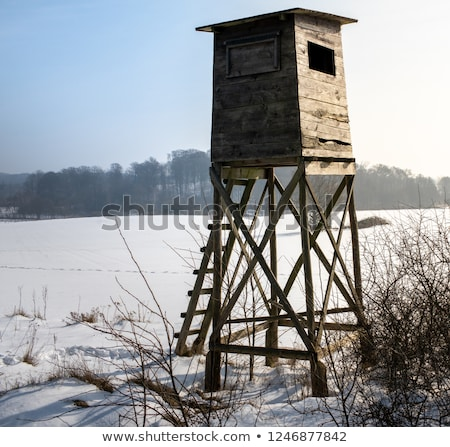 Ahşap yüksek koltuk Çek Cumhuriyeti manzara Stok fotoğraf © artush