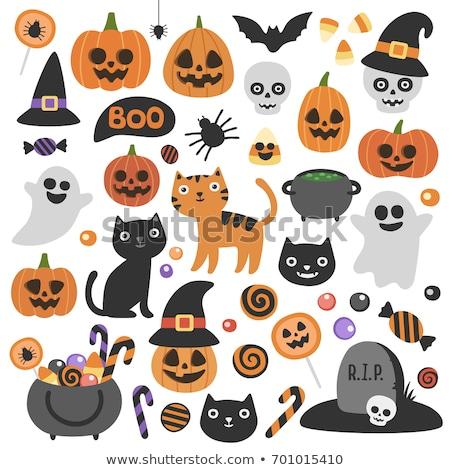 ingesteld · decoratief · iconen · halloween · ontwerp · groep - stockfoto © elenapro
