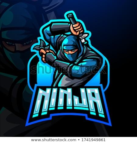 Nindzsa szamuráj illusztráció kard férfi sport Stock fotó © adrenalina