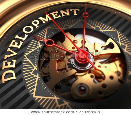 development on black golden watch face stock photo © tashatuvango