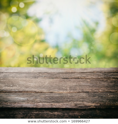 Rústico cocina primavera medio ambiente aceite de oliva calabazas Foto stock © marimorena