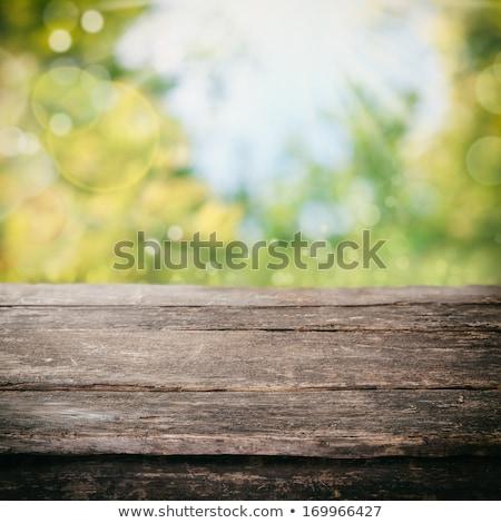 rustic kitchen with spring environment stock photo © marimorena
