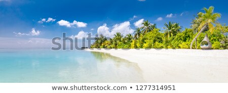 Bahamas Strand neue Wasser Ozean Sand Stock foto © pancaketom