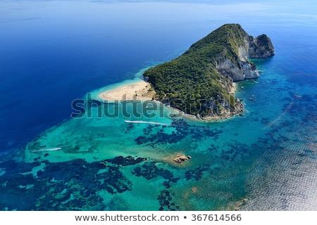 пляж черепахи острове Закинф Греция природного Сток-фото © sirylok