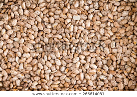 Healthy Brown Pinto Beans for Wallpaper Background Stock photo © ozgur