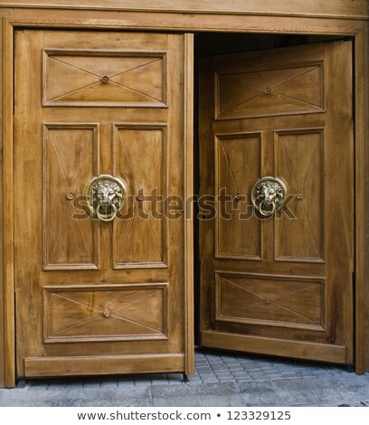 Lion Head as Wood Carving in Old Door Stock photo © stevanovicigor