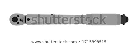 Ratchet spanner Stock photo © ozaiachin