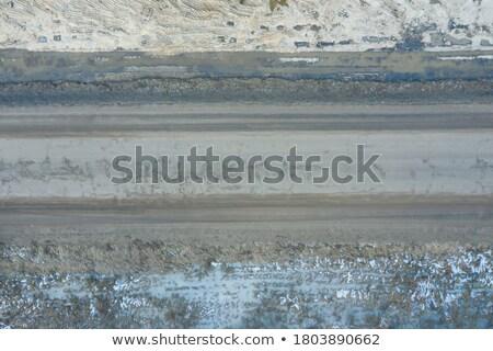asfalto · carretera · ruta · cielo · árbol - foto stock © ssuaphoto