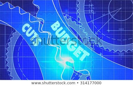 Budget Cuts on the Cogwheels. Blueprint Style. Stock photo © tashatuvango