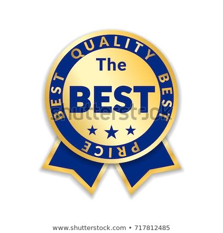 Beste prijs Blauw vector icon ontwerp digitale Stockfoto © rizwanali3d