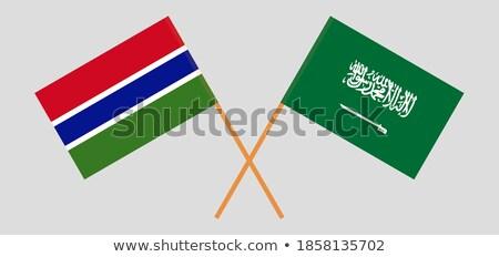 Saudi Arabia and Gambia Flags Stock photo © Istanbul2009