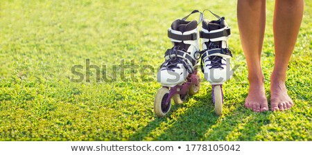 roller legs on the grass Stock photo © Paha_L