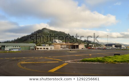 Airplane arriving to the Tenerife airport. Canary Islands. Spain Stock photo © amok