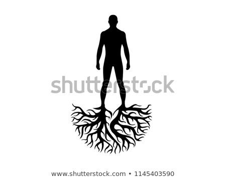 árbol fuerte raíces ilustración mítico naturaleza Foto stock © artibelka