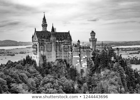 view of world-famous Neuschwanstein Castle under renovation on a Stock photo © meinzahn