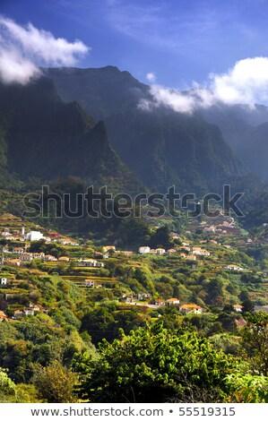 Stockfoto: Madeira · berg · landschap · hemel · huis · hout