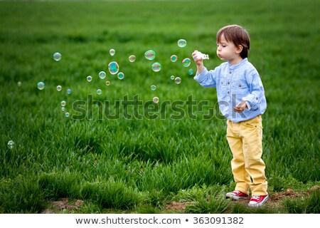Weinig jongen zeepbellen spelen tuin leuk Stockfoto © Klinker