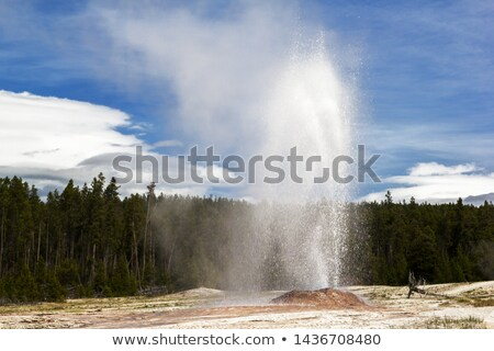 Pink Cone Geyser Erupting Yellowstone National Park Wyoming Stock photo © cboswell