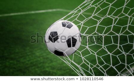 futballabda · net · zöld · fű · futball · nyár · labda - stock fotó © Phantom1311