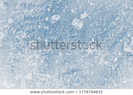 closeup snow transparent backdrop Stock photo © romvo