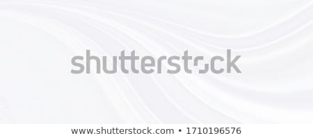 Abstract smooth blurred grey waves background Stock photo © saicle