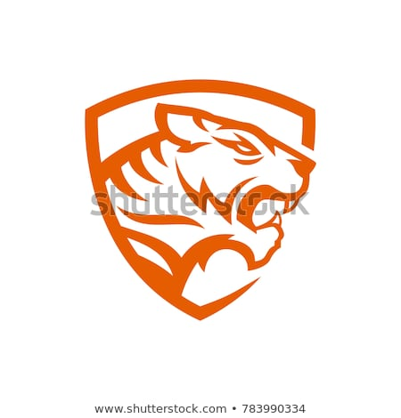 Tigre logotipo vetor mascote cabeça Foto stock © Andrei_